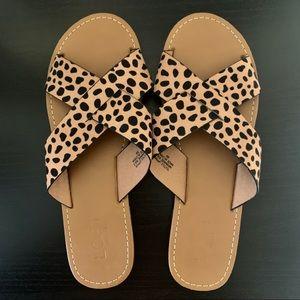 LOFT Leopard Print Sandals